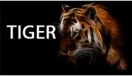 Bật lửa Tiger